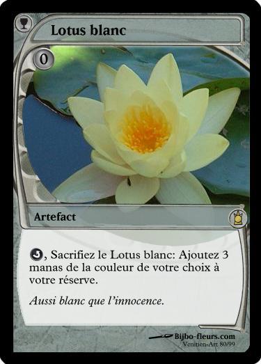 Carte Magic Black Lotus Prix.Analyse De La Carte Black Lotus