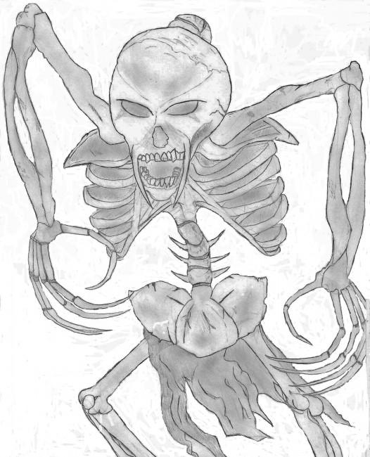 Vampire squelette - Dessin de squelette ...